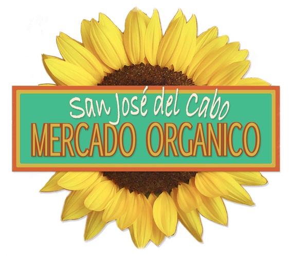 Organic market 2